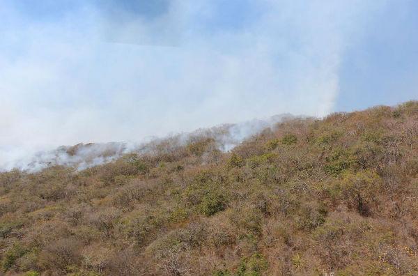 El incendio inició en el ejido Nuevo Bochil, municipio de Chiapa de Corzo. Foto: Notimex