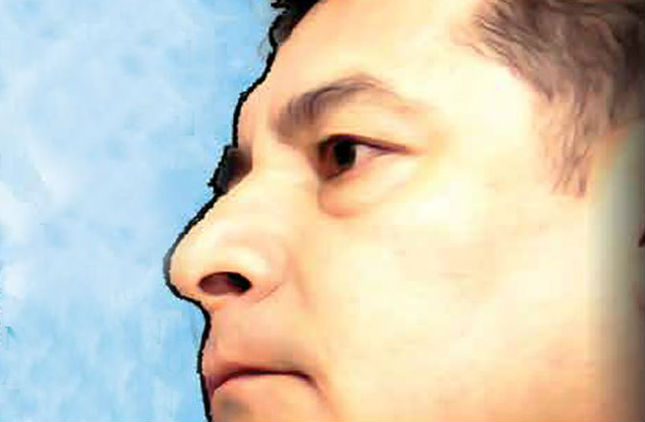 ILUSTRACIÓN: PAUL PERDOMO / NORBETO CARRASCO
