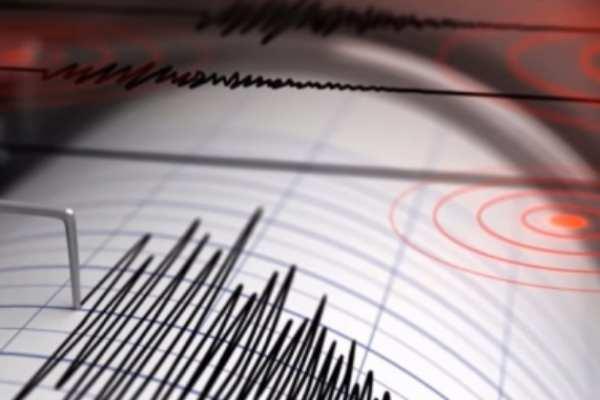 Este es el segundo sismo de este domingo con intensidad considerable.  FOTO: ARCHIVO NOTIMEX
