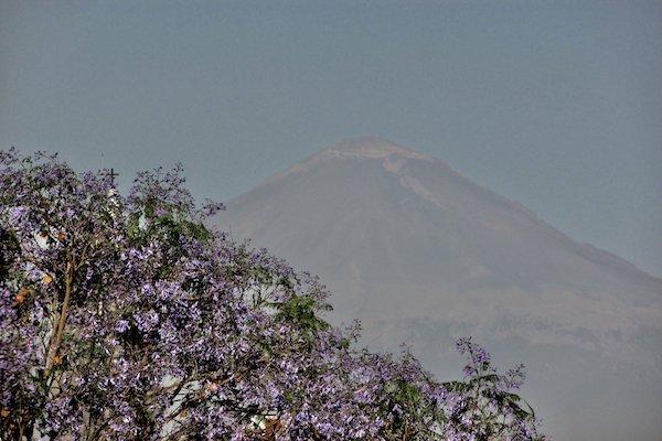 Protección Civil de Puebla mantiene el monitoreo constante en el coloso. Foto: @constanza