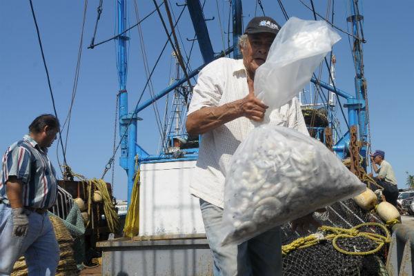 Finalmente indicó que el robo de camarón en alta mar y en las comunidades sigue encabezado por la delincuencia organizada