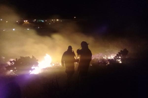 Para sofocar el fuego acudieron al lugar bomberos y elementos de Protección Civil. FOTO: ESPECIAL