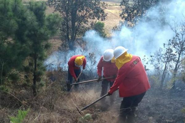 La dependencia ha realizado 104 cursos de capacitación entre los ciudadanos, para enfrentar el fuego y evitar lesiones