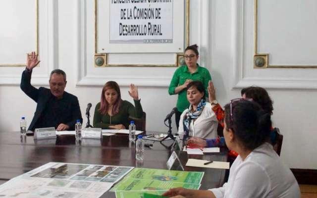 Se hará una inversión histórica de mil millones de pesos para la conservación y recuperación de estos ecosistemas. Foto: Especial