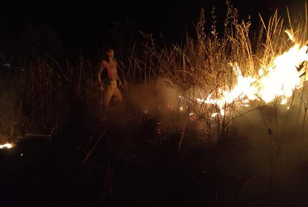 El gobierno municipal hizo un llamado a la población a no realizar quemas de parcela cerca de los bosques. FOTO: ESPECIAL