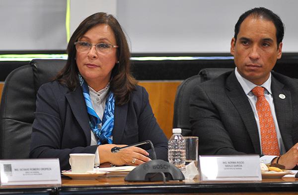 La secretaria de Energía, Rocío Nahle García. FOTO: NOTIMEX