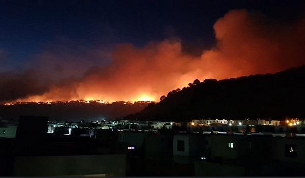 El incendio es atendido por brigadas de Semadet, OPD Bosque La Primavera, Comisión Nacional Forestal (Conafor), Unidad Estatal de Protección Civil y Bomberos Jalisco, y elementos de los municipios de Zapopan, Tlajomulco de Zúñiga y Tlaquepaque. Foto: Especial