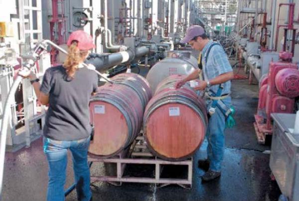 La empresa familiar se consolida como un pilar en el crecimiento de la industria del vino.FOTO:  FACEBOOK E. & J. GALLO WINERY