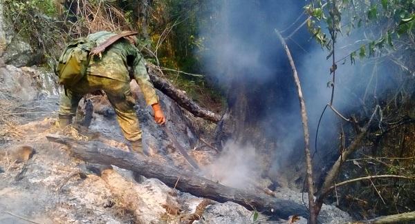 Hasta el momento se desconoce el número de personas afectadas por la cantidad de incendios en la entidad. Foto: Especial