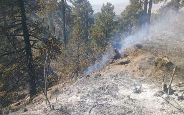 En las últimas horas lograron liquidar el incendio en Huauchinango, en la localidad La Puga-La Mesita, con una afectación en cuatro hectáreas de matorral y pastizal