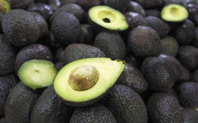 La incertudumbre elevó 35% el precio del fruto en el mercado de exportación. FOTO:CUARTOSCURO