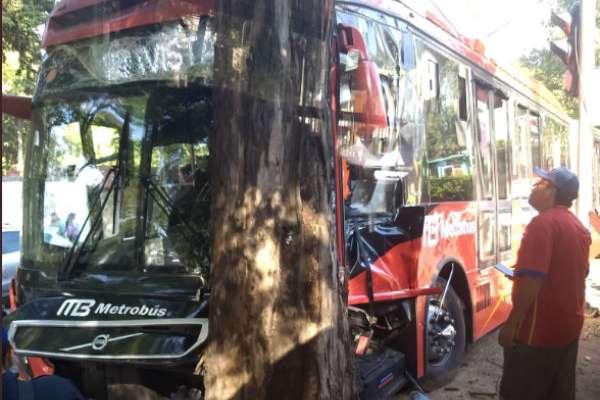 La unidad quedó varada en el camellón tras el impacto contra el árbol.FOTO:ESPECIAL