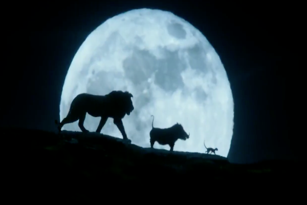 Disney muestra por primera vez cómo lucirán Timón y Pumba. Foto: Especial