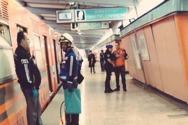 El hecho provocó el retraso de los trenes durante 27 minutos. Foto: @ElPolloCDMX