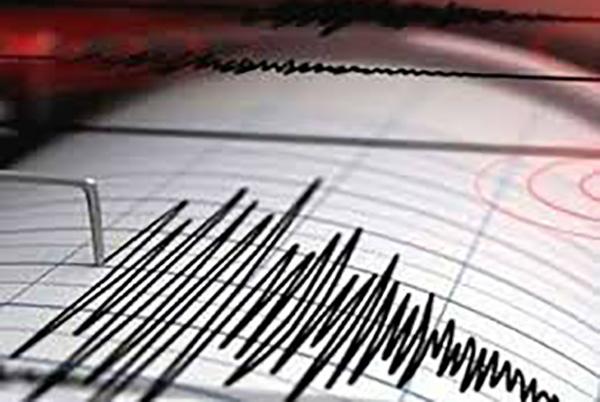 La Oficina Nacional de Emergencia del Ministerio del Interior y Seguridad Pública (ONEMI) descartó, por su parte, la posibilidad de que el temblor genere un tsunami en las costas de Chile.