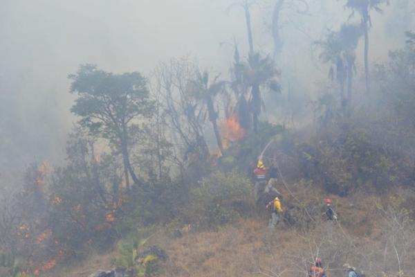 Acapulco registra un incendio en ejido El Veladero, que también ha sido controlado en un 90 por ciento. Foto: PC Guerrero