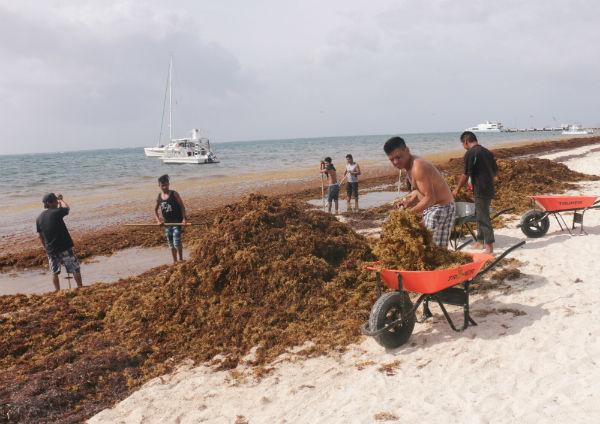 En entrevista con El Heraldo TV, el titular de Fonatur detalló la problemática que se vive en el corredor del Caribe Mexicano, Cancún-Riviera Maya Foto: Cuartoscuro