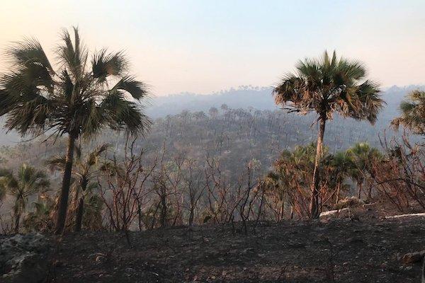 Incendio en Colima
