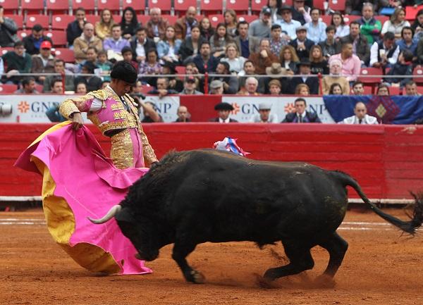 La resolución de la Corte sólo aplica para la empresa que promovió el amparo y únicamente en la Ciudad de México. Foto: Cuartoscuro