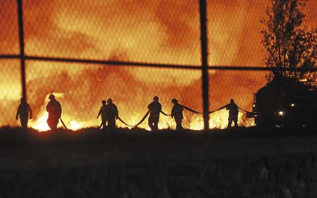 Más de 3 mil hectáreas forestales han sido afectadas por el fuego en la capital en 2019. Foto: CUARTOSCURO