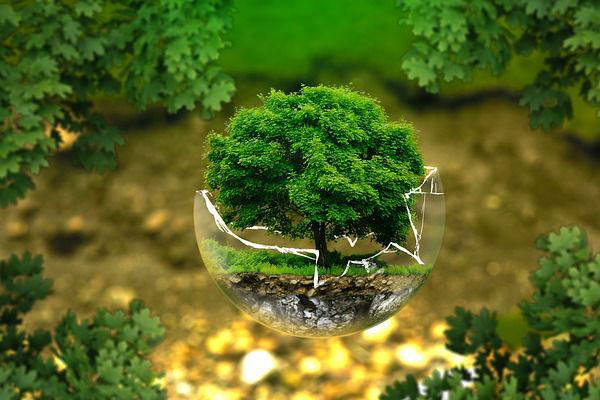 Lo que realmente sería una solución es acabar con el uso de combustibles fósiles. Foto: Pixabay