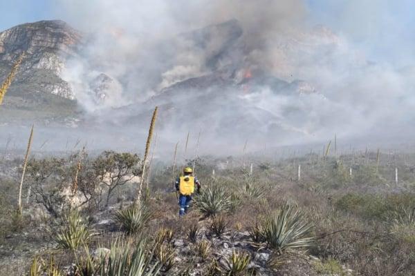 Servicios de emergencia laboran para controlar el siniestro. Foto: Protección Civil Nuevo León. Foto: Protección Civil Nuevo León.