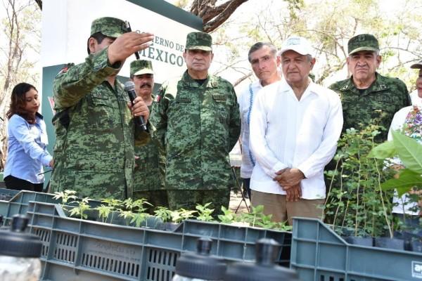 """El programa """"Sembrando Vida"""" del Gobierno de México, tiene contemplados 12 viveros forestales en el país. Foto: Especial"""