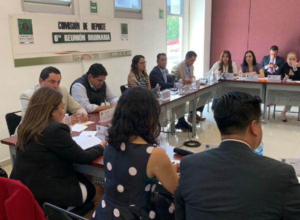 La Comisión de Deporte de la Cámara de Diputados validó opinión del Plan Nacional de Desarrollo 2019-2024. FOTO: ESPECIAL