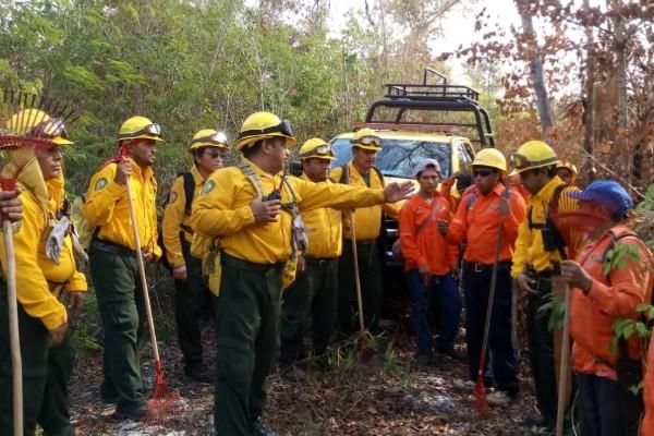 70 brigadistas de otros estados llegaron a Durango para combatir el incendio. Foto: Conafor