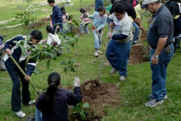 Alfredo del Mazo, gobernador del Estado de México, hizo el anuncio como parte de su campaña anual de reforestación. Foto. Especial.
