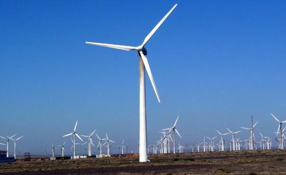 """""""La expectativa del sector es óptima, ya que para 2024, 35 por ciento de la energía en el país podría estar sustentada con fuentes renovables. FOTO: ESPECIAL"""