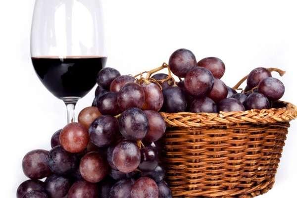 El vino más caro del mundo se fabrica en España. Foto: Especial