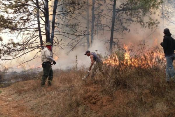 Se registran 4 incendios en Jalisco