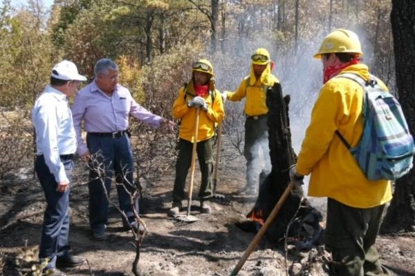 Incendios forestales en Durango