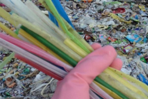 La alcaldesa Patricia Durán Reveles hizo un llamado a la ciudadanía a reducir su consumo de plásticos. Foto Ilustrativa