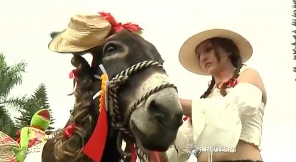 festival-de-los-burros
