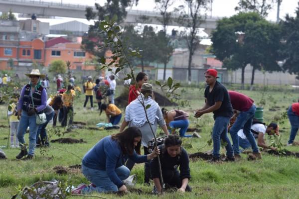 reforestacion_guadalajara