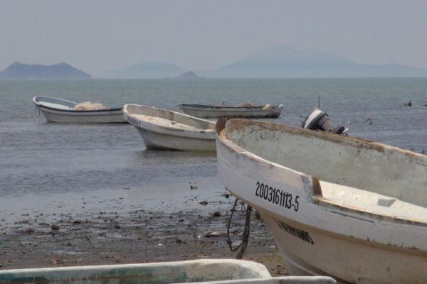 Alrededor de 35 mil hectáreas de la Laguna Superior del Istmo de Tehuantepec,se están contaminando con aguas negras.