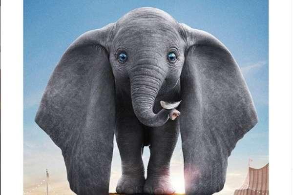 Regalos de Dumbo. Foto: Especial.