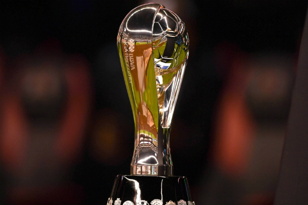 19 equipos buscarán el título de la Liga MX. Foto: Especial.