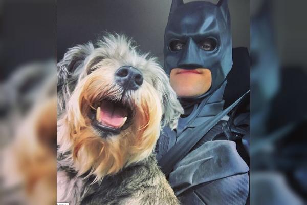 Batman rescata a perritos condenados a morir. Foto: especial