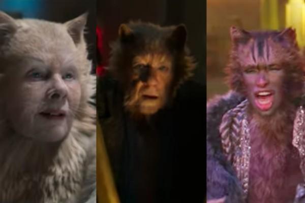 Trailer Cats elenco
