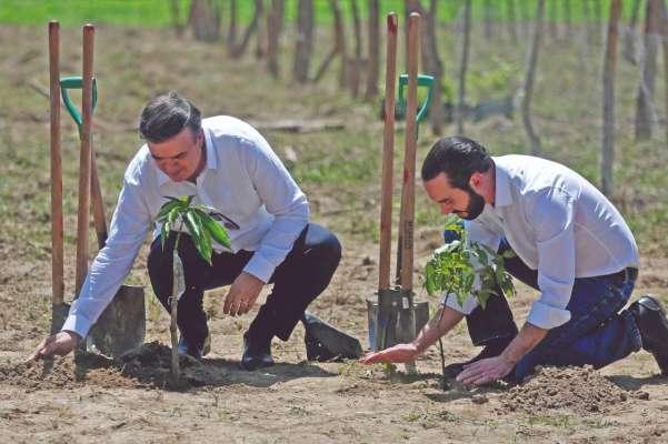 Marcelo Ebrard Casaubón, titular de la SRE, y Nayib Bukele, presidente de El Salvador, pusieron en marcha el programa Sembrando Vida, respaldado con 31 millones de dólares aportados por México. Foto: Reuters