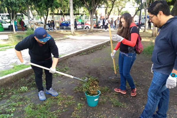 En las alcaldías Coyoacán, Gustavo A. Madero y Cuauhtémoc. Foto: Especial.