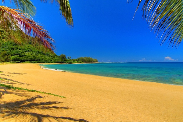 Playa-Kauai-Hawaii