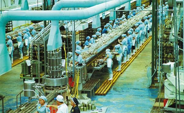 Productores dicen que el retraso de permisos son por menos personal en Cofepris y Economía. Foto: Cuartoscuro