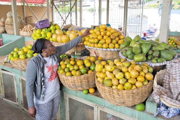 COMIDA. Naciones Unidas llama a modificar los hábitos alimenticios. Foto: AP