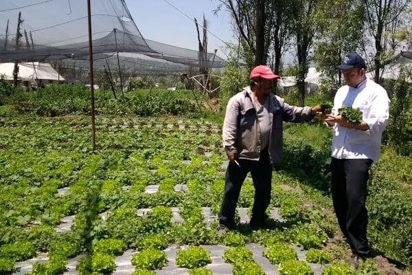 Alimentación_sostenible_opción_lucha_contra_cambio_climático