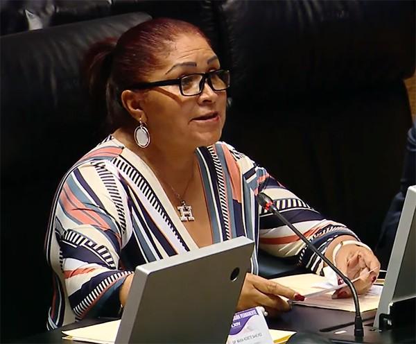 Iniciativa de ley no busca atentar contra libertad de expresión, más bien tipificar violencia digital como delito: Olga Sosa
