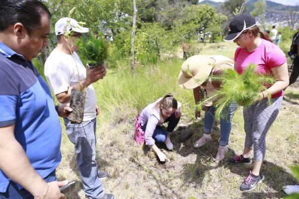 Ricardo Luna, titular de la Secretaría del Medio Ambiente en el Estado, señaló que con esta campaña se pretende aumentar la superficie arbolada en la entidad. Foto: Cortesía